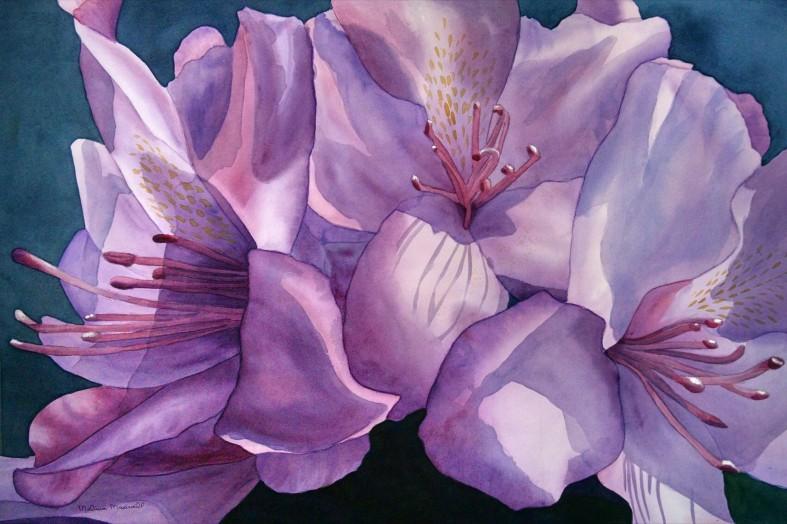 purplerhod